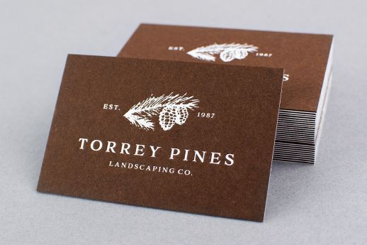 Colorplan duplex foil business card
