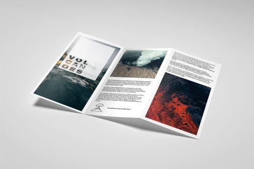DL z-fold leaflet printing